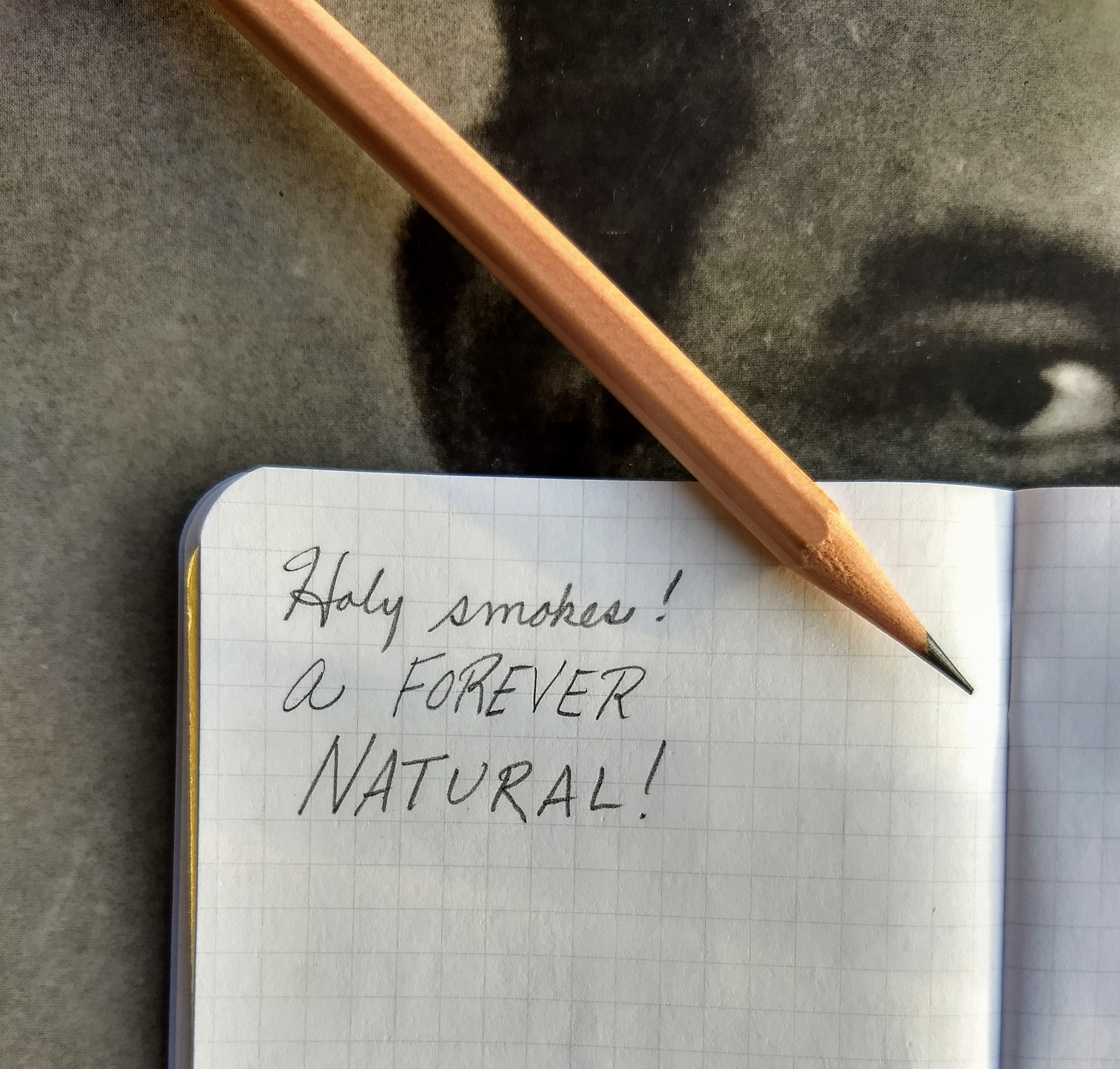 Blackwing Natural: Extra Firm and Kinda Naked  – Pencil